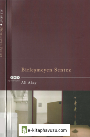 Ali Akay - Birleşmeyen Sentez - Yky