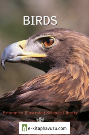 Birds-Brittanica