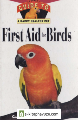 First Aid For Birds [Julie Rach Mancini, Gary A. Gallerstein]