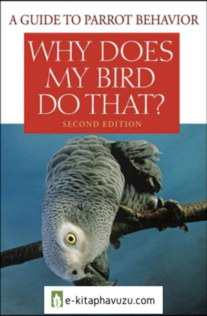 Why Does My Bird Do That - A Guide To Parrot Behavior