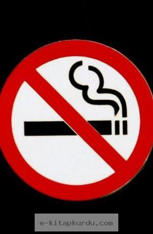 Sigara, Alkol Ve Uyuşturucu Üzerine... - Evrim Ağacı