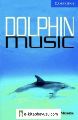 161 Dolphin Music