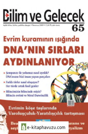 Bg 65