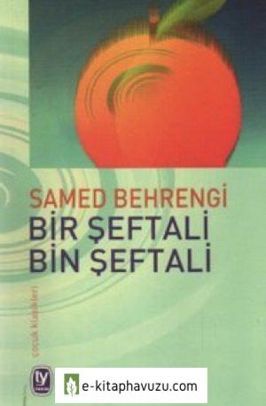Samed Behrengi - Seftali Bin Seftali, Bir