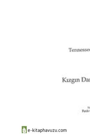 Tennessee Williams - Kizgindamdakikedi